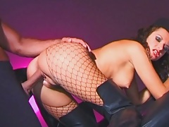Luisa Demarco doggy style fishnet pantyhose sex and anal